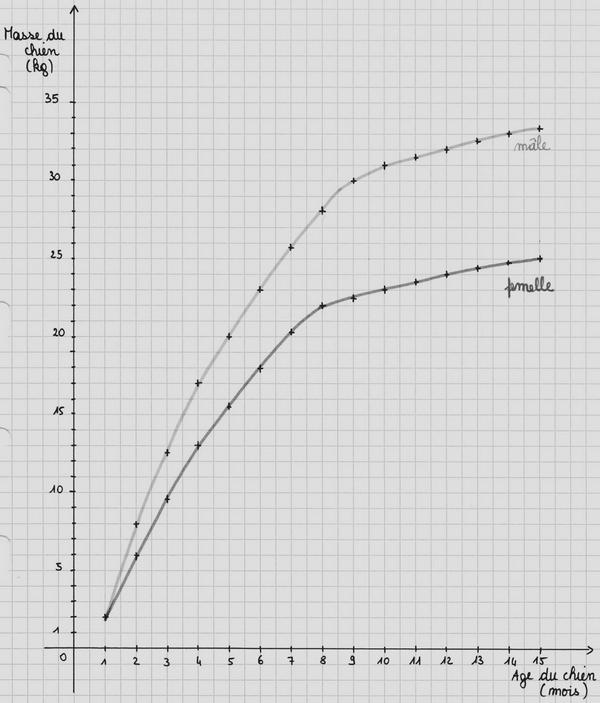 Le graphique d'Adrien